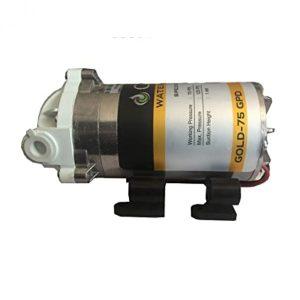 Cruze RO Pump